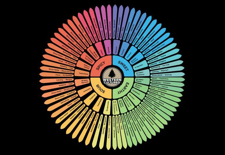 Circle of Terpenes