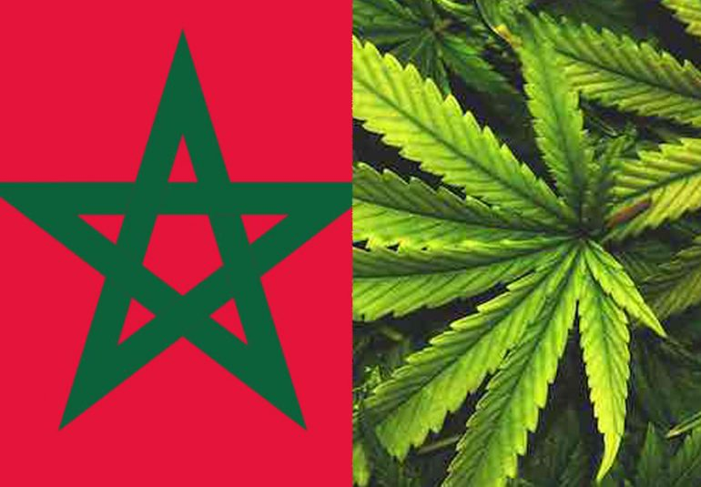 maroc-cannabis-number-one-producer